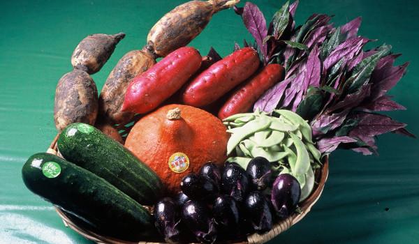 加賀野菜、ホームページで紹介するとしたら何が必要?